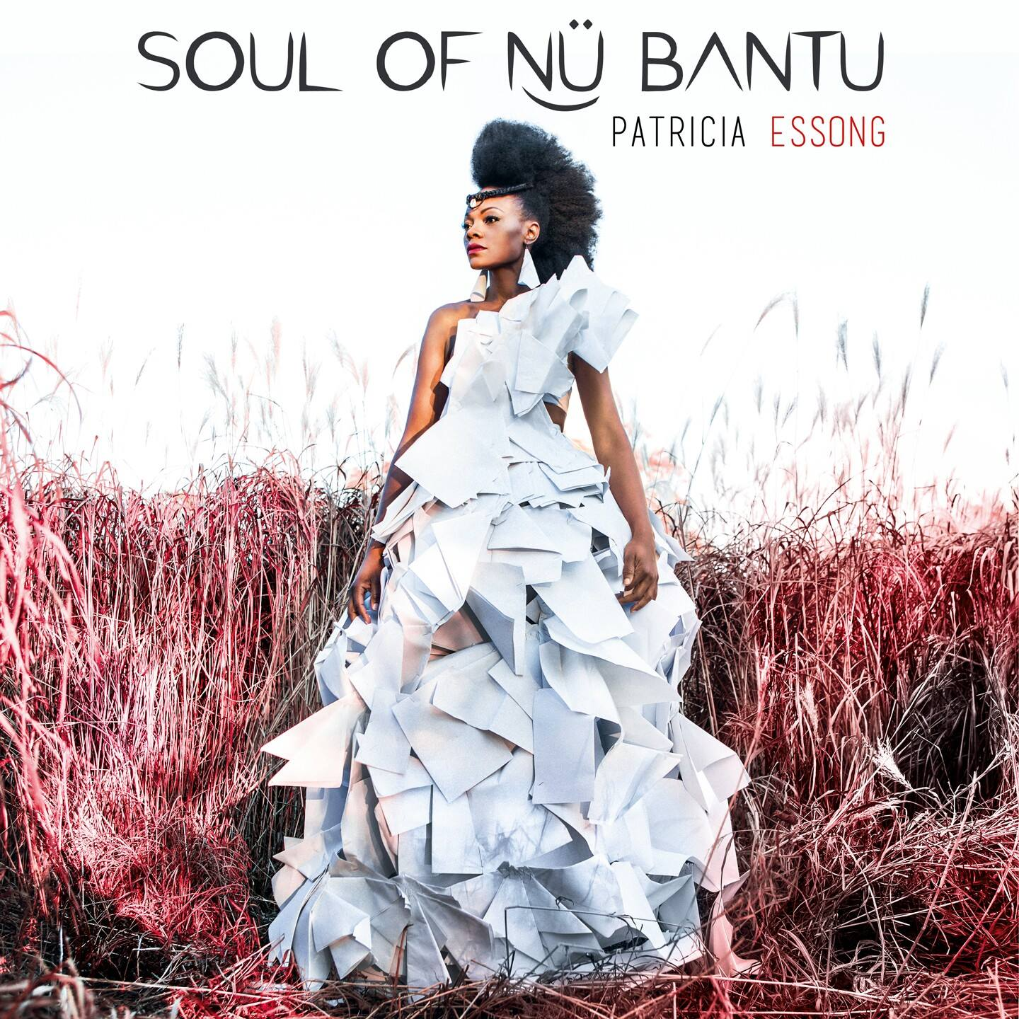 Soul Of Nü Bantu